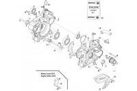 CARTER-POMPE A EAU-DEMARREUR - ROTAX 125 MAX-J125-MINI-MICRO