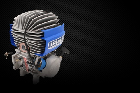 Kart IAME engines